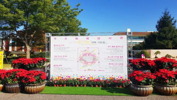 Small_2019-나주국제농업박람회011.jpg