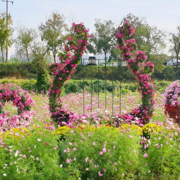 2019 연수구승기천가을꽃축제